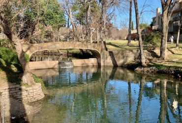 Updated Oak Lawn Condo with Views of the Creek!