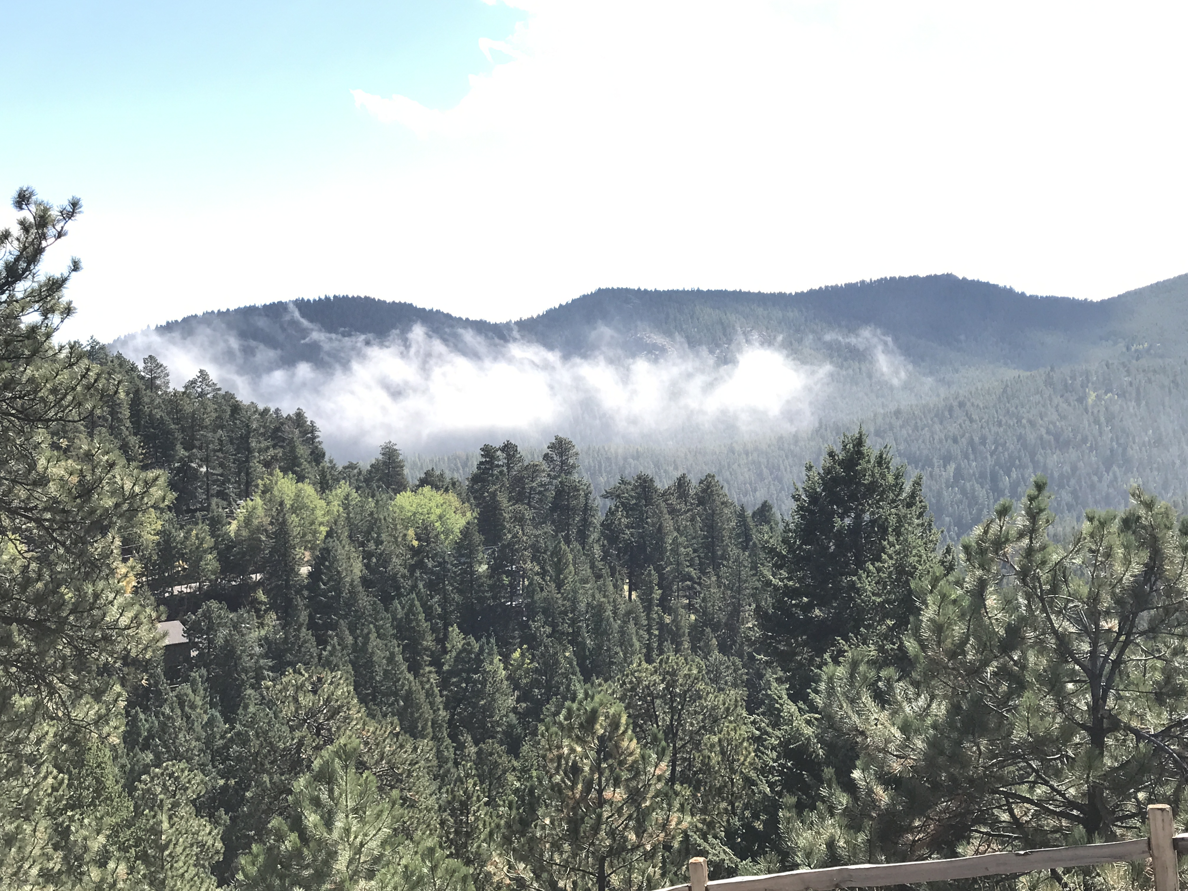 7291 Timber Trail Rd, Evergreen, CO 80439