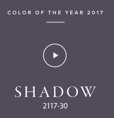 benjamin-shadow