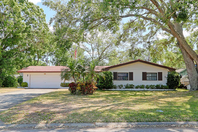1349 Viewtop Dr Clearwater FL-small-001-1-Front Exterior-666x444-72dpi