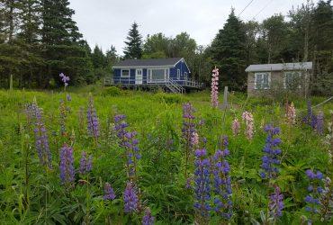 3342 Clam Harbour Road, Clam Harbour, Nova Scotia B0J 1Y0