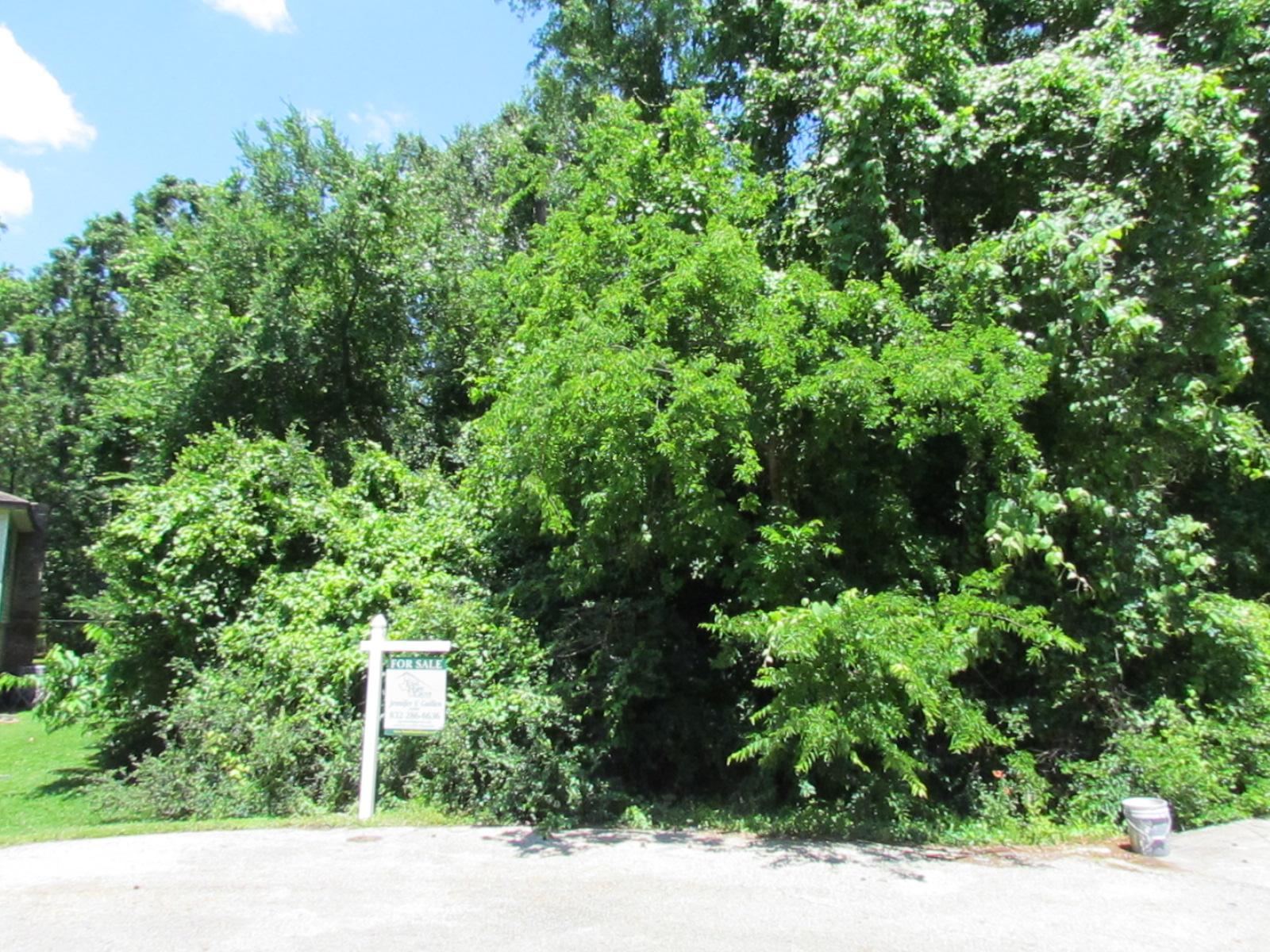 16 River Plantation Drive Conroe, TX 77302 - Jennifer ...