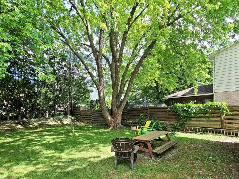 146 Armitage Dr backyard mls21