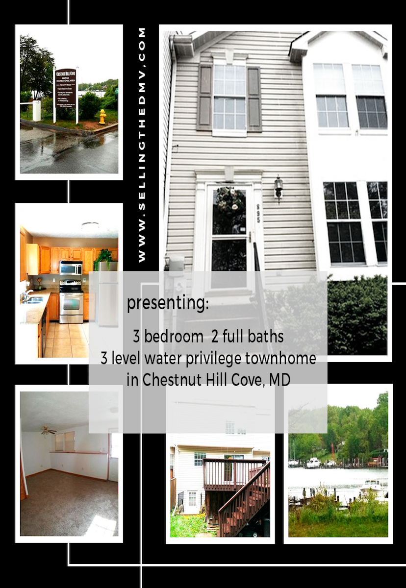 Chestnut Hill Cove townhome with water privileges