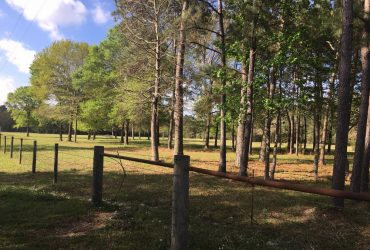 Beautiful +/- 10 acres – Gene Campbell Rd., New Caney, TX – only $289,000 SOLD!