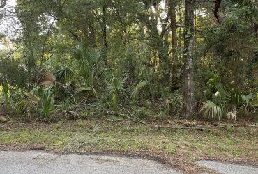 6375 and 6387 N. Diamond Terrace Crystal River, FL – $25,000