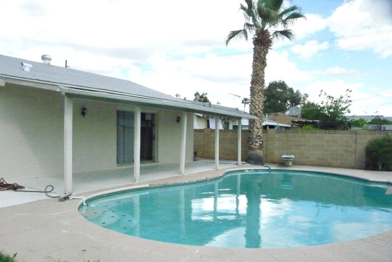 03-cactus-wren-pool-view